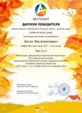 2_diplom_БагинЛев_К-1_Гр-2